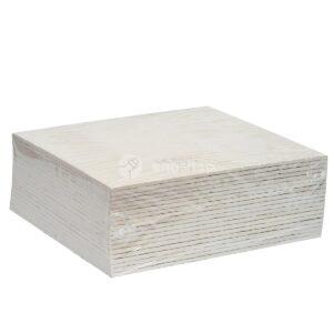 płyty filtracyjne HOBRAFILT S20 N / 20x20 cm 20 szt.
